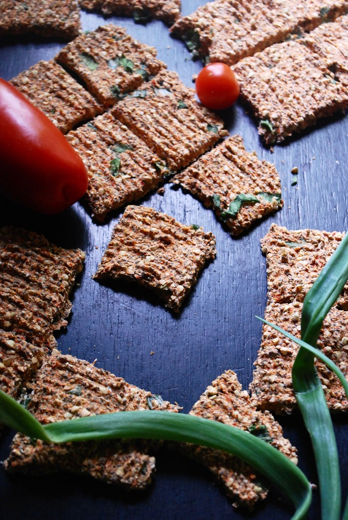 crackers_sarrasin_oignon_1
